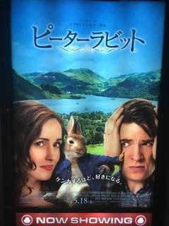 movie_prbi.jpeg