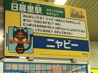 pokemon_sl_neko_20180813_s.jpg